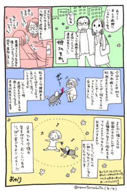まーぶさんアナフィラキシー(4).png