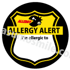 アレルギー英語版(案).png