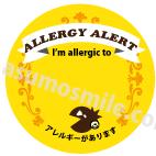 アレルギー英語版(案B).png